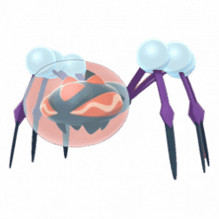 Araquanid gallery image