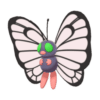 Butterfree gallery image