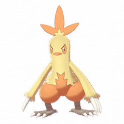 combusken product images