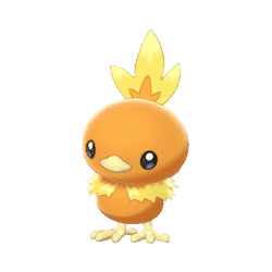torchic product image