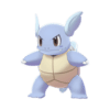 wartortle product image